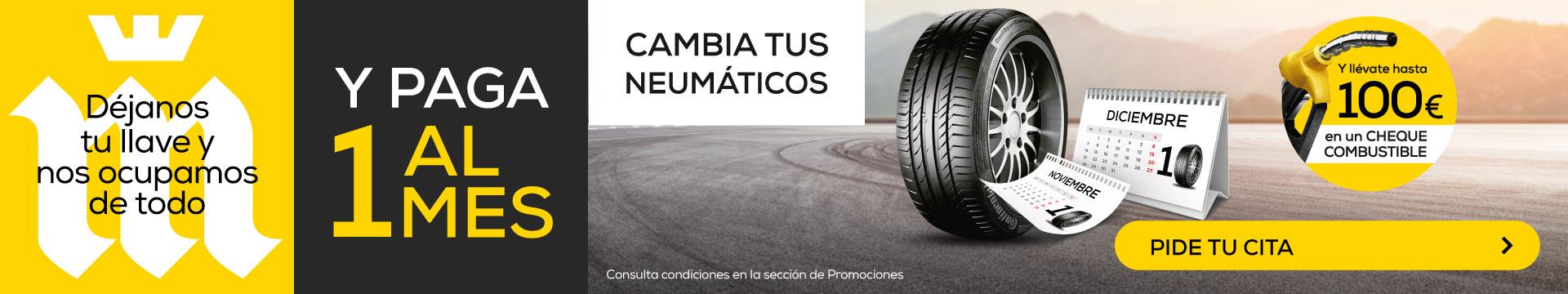¡Compra tus neumáticos y paga 1 al mes!